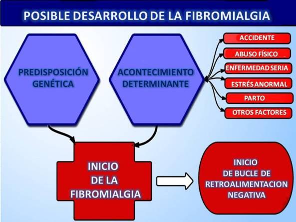 genetics_diagram copy 2
