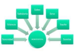 FIBROMIALGIA: Formas de elevar la Serotonina de un modo natural