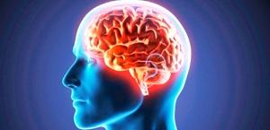 inflamacion-cerebro